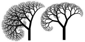 Fractal imagery of trees. (rosettacode.org)