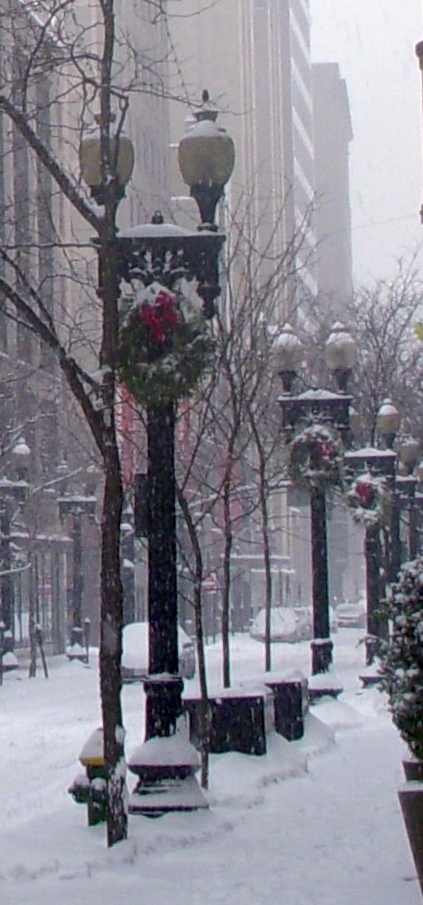snowy4