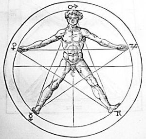 The golden ratio traced on the figure of man. (Wikipedia)